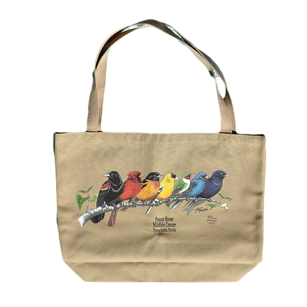 shop_Canvas-Tote-Songbirds