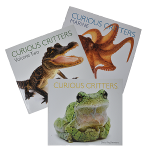 Curious Critters Series Books