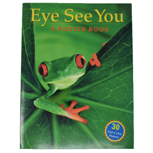 Eye-See-You-Poster-Book