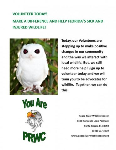Volunteer at PRWC!
